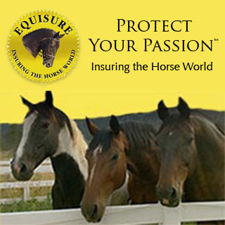 Equisure - Protect Your Passion - Insuring the Horse World