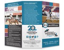 IEA Brochure Preview