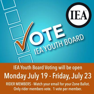 Vote Youth Board SM Button